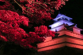 Tusruga-jo Castle & the Meiji Restoration