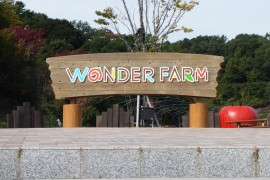 Tomato Heaven in Wonder Farm, Iwaki