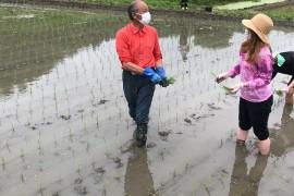 Experience Rice Planting in Fukushima, Japan!