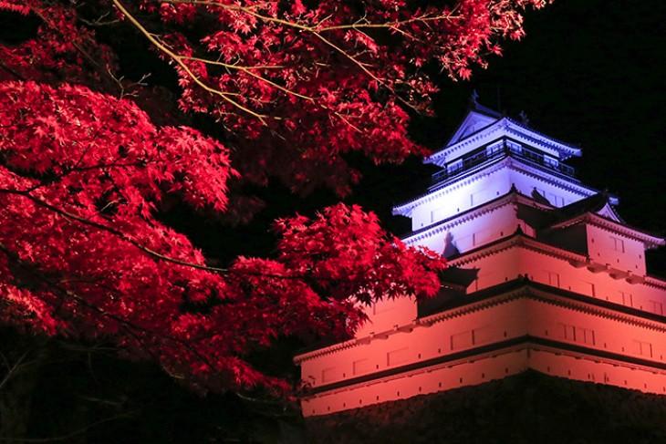 Tsurugajo Castle & the Meiji Restoration