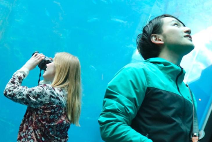 Visiting Aquamarine Fukushima