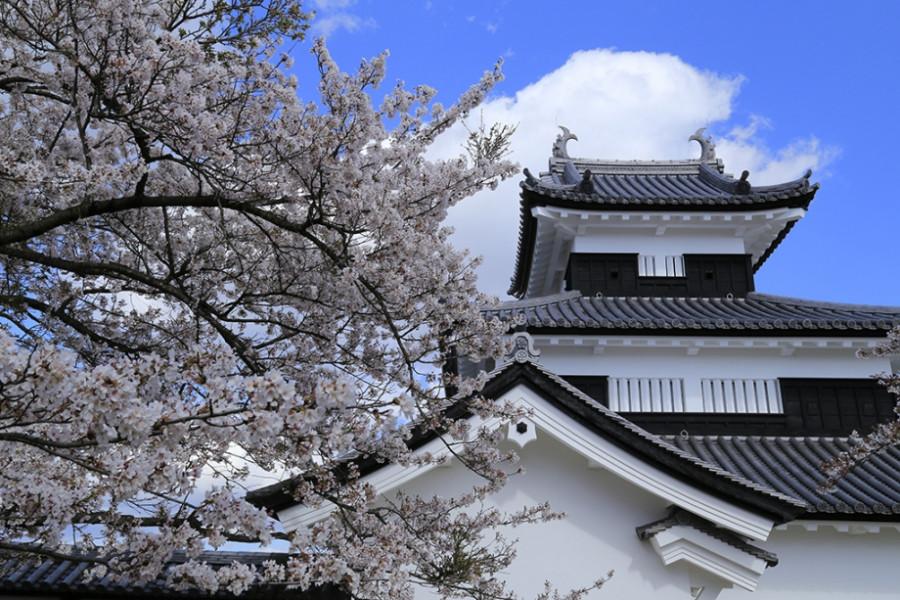 Lâu đài Komine Shirakawa