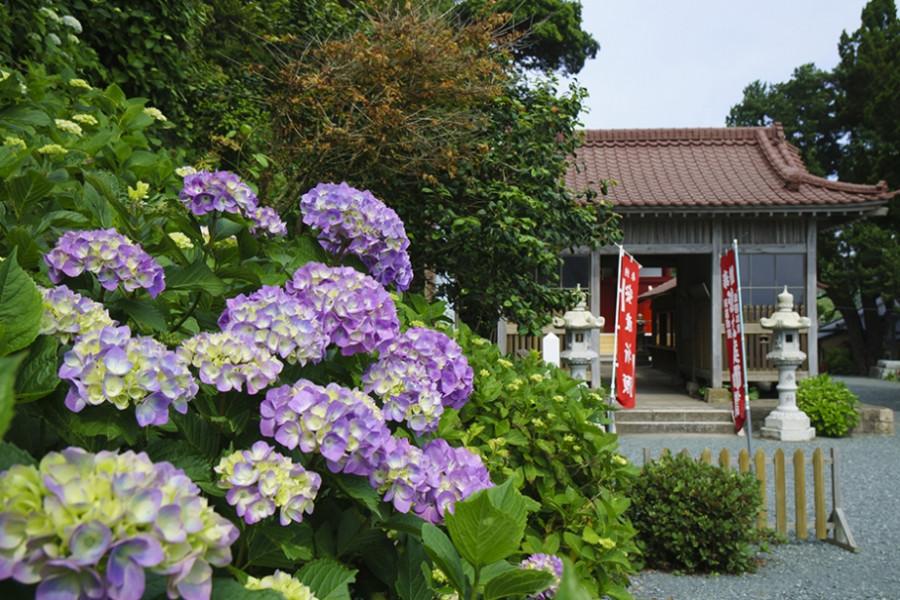 Hattachi-Yakushi Temple
