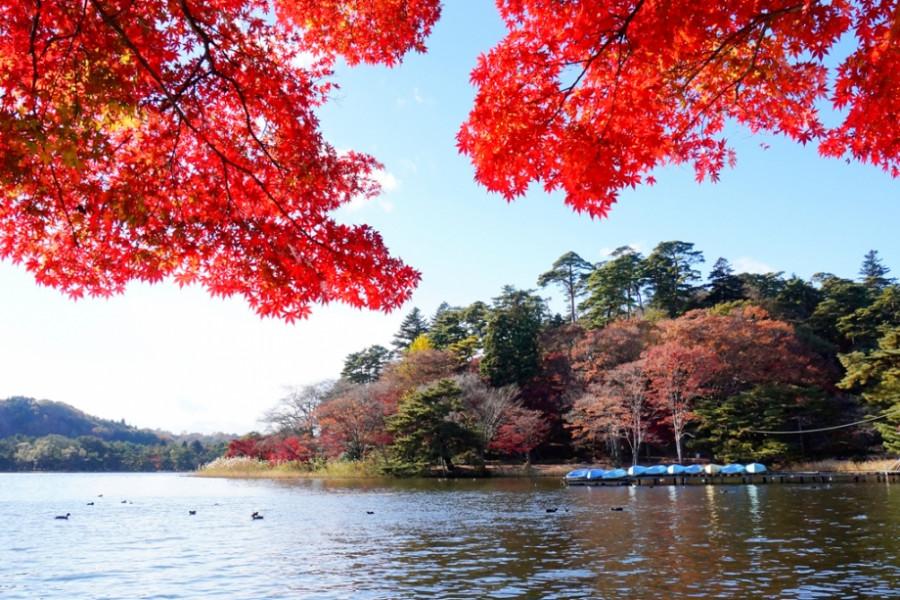 난코 공원(시라카와시)